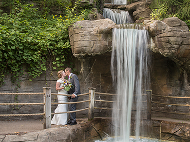 Elise & Chris under the waterfall at the John Ball Zoo on their Wedding Day